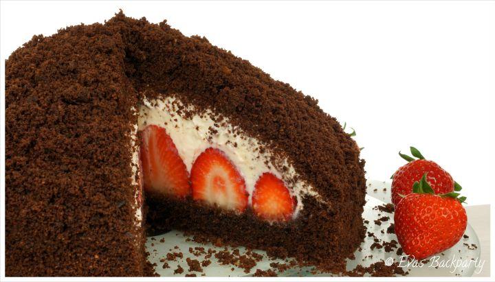 Erdbeer Maulwurfkuchen